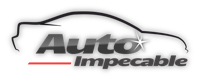 logotipo de AUTO IMPECABLE SL.